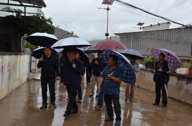 20200424全县人居环境整治现场会在扬武召开